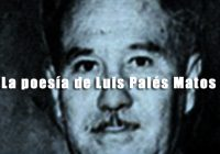 Luis Palés Matos | Poeta | Puerto Rico