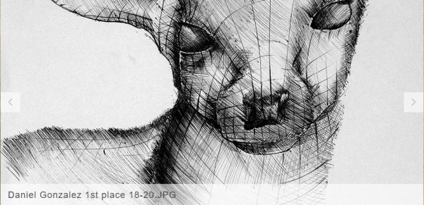 Boligráfico2-Certamen Dibujo-autogiro arte actual