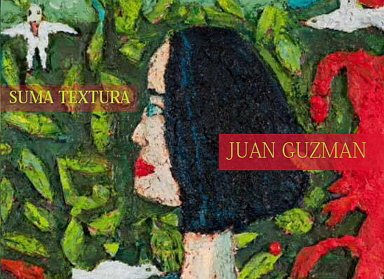 Juan Guzmán | Suma Textura | The Art Room