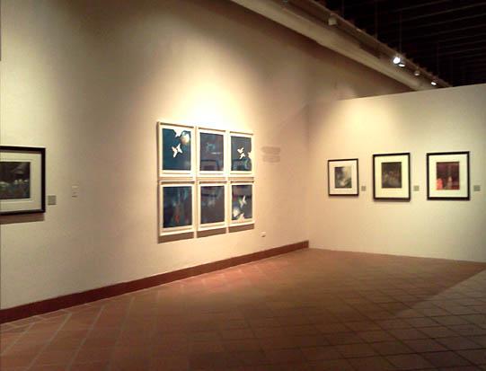 Vista de algunas obras de su ultima exhibición María Emilia Somoza: su huella en el aguafuerte