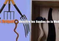 René Delgado Descifra los Sueños de la Madera