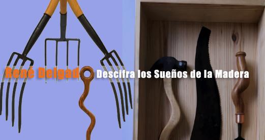 René Delgado Sueño de Madera exhibición