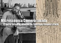 Microscópica Camera Lucida | Cajal