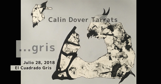 ...Gris de Calin Dover Tarrats | Autogiro Arte Actual