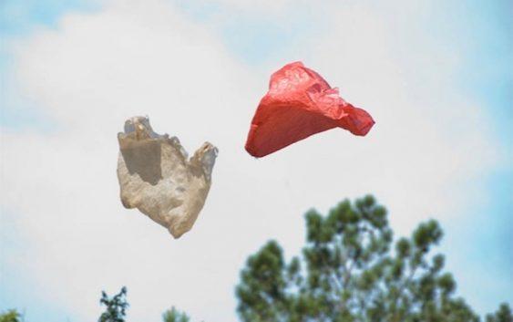 Plásticos en Museos   Eupalinos Ugajin foto   Autogiro Arte Actual