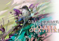 En apoyo a Galería Guatíbiri