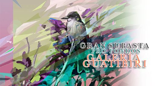 Galería Guatíbiri | Autogiro Arte Actual