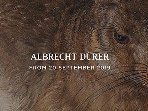 Exhibición de Alberto Durero
