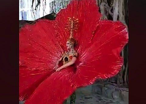 flor de maga traje tipico
