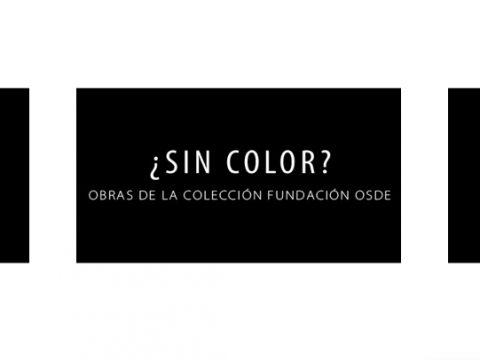 sin color exhibición